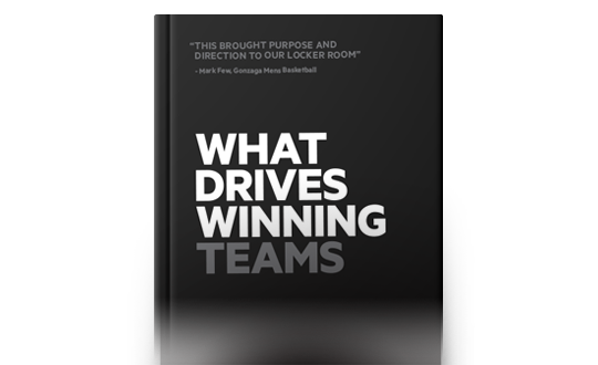 What Drives Winning Teams Book